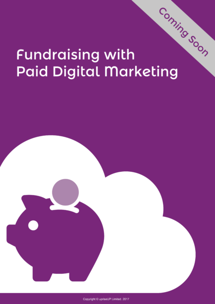 Fundraising with paid Digital Marketing Ebook Cover