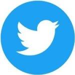 social media advertising - twitter logo