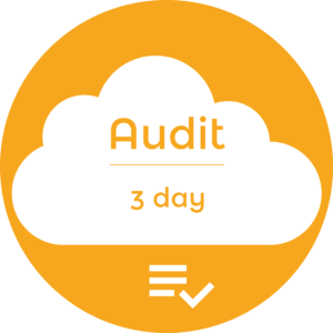 SEO Audit Icon