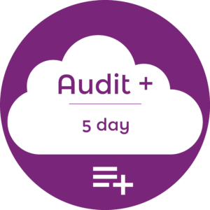 SEO Audit + Icon