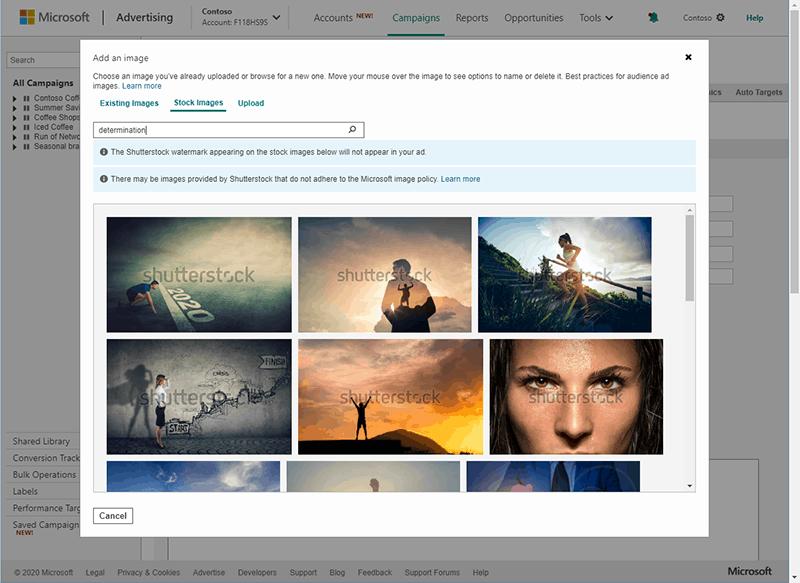 Shuttershock Images on Microsoft Ads